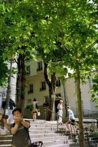 Journey to Find Place Emile Goudeau