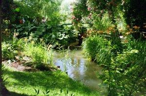 Restful Beauty in Monet's Garden