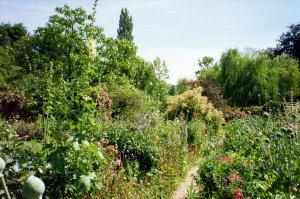 Pathways through Monet's Garden